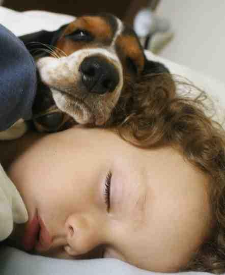 20101125044609-perro-y-ninodormido.jpg