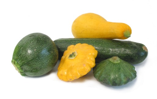 20111022093733-summersquash-group.jpg